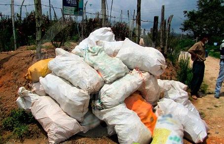 Desactivan riesgo de intoxicación al recoger 2 mil kilos de envases de plaguicidas en el Cesar