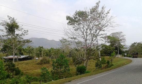 Procuraduría hizo reparos a la Zonas de Reserva Campesina en los Montes de María
