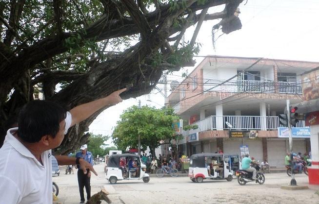 En Baranoa, sobre vive el Pivijay de la plaza. Por: Alex Tilano Molina*