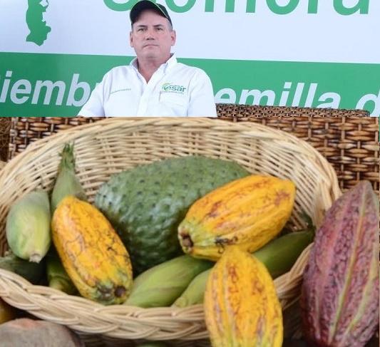 $2.500 millones garantía de Incentivo a la Capitalización Rural para 834 pequeños y medianos productores del Cesar