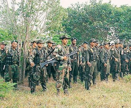 Ejercito: Enfrentamiento entre guerrilleros de las Farc, que dejaría 2 muertos en Caquetá es una violación al cese al fuego