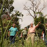 Boletín Agroclimático de Minagricultura hace recomendaciones para que los productores del campo atiendan en abril