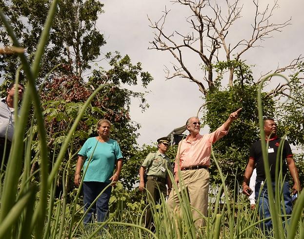 Gobernación y Minagricultura  abren convocatoria para productores del sector agroindustrial