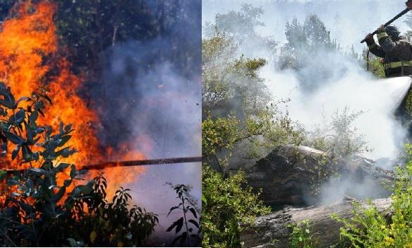 incendio-forestal-1