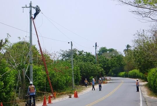 Electricaribe realizará poda técnica en Sabanalarga, Atlántico