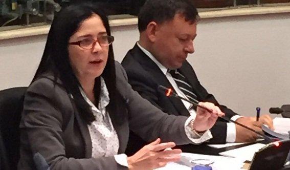 Vicepresidente del Conservatismo Inés López, no opina igual que Andrade sobre la aspersión aérea: Se debe buscar alternativa