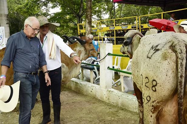Ministerio de Agricultura, Ica, Asoganorte y Gobernación en pos de un Atlántico libre de brucelosis y tuberculosis bovina