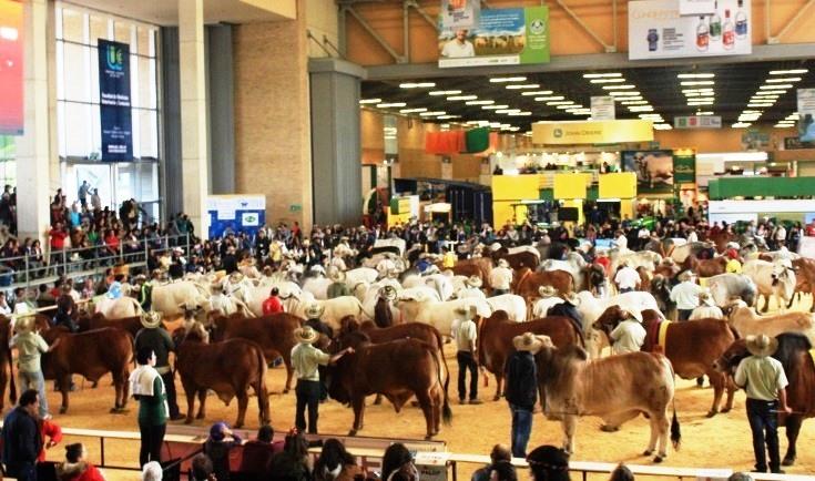 Bajo reserva de algunos sectores inició en Bogotá desde este jueves 13 julio y hasta el 23 la feria más grande del sector, Agroexpo