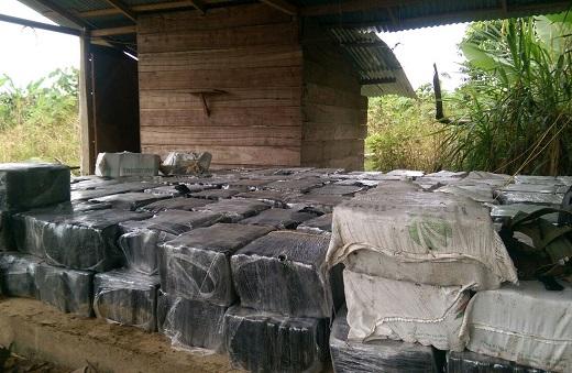 Incautan más de 12 toneladas de cocaína en el Urabá antioqueño