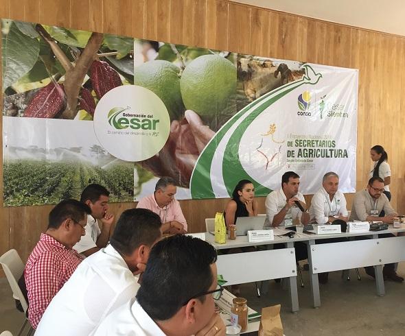 Consa consigue aliados para impulsar iniciativas de beneficio para el sector agropecuario