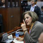 Senado debatirá los graves hechos en la pasada jornada electoral y en Comisión la falta de control efectivo en las Zonas Veredales Transitorias
