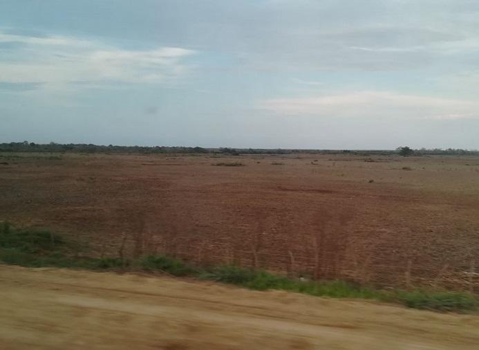 Ministerio de Ambiente suspende las actividades de relleno de humedales en la Ciénaga Grande de Santa Marta