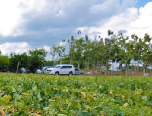 C.R.A. Reafirma su compromiso con la conservación del ecosistema en el Día de la Biodiversidad