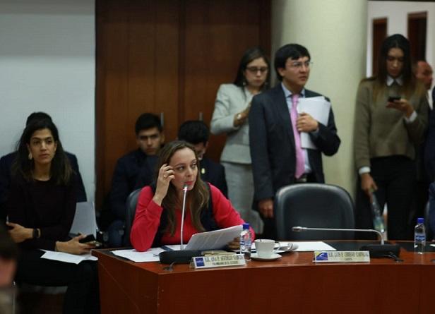 Representante Ana Paola Agudelo solicitó resultados eficientes para la reconstrucción de Mocoa