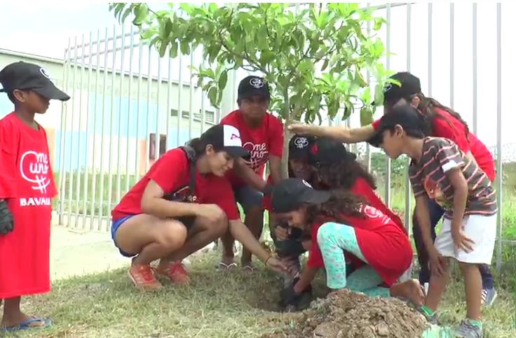 Soledeños sembraron 400 árboles voluntariamente en el barrio Nueva Esperanza. Soledad será la ciudad más arborizada del país, aseguró el alcalde Joao Herrera