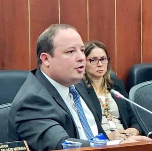Segmentar el mercado para dos operadores del servicio de energía en el Caribe es oportuna y viable, dijo el senador Araújo