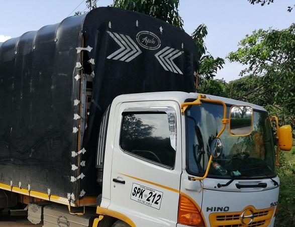 Mintransporte extrema medidas contra vehículos de carga presuntamente mal matriculados