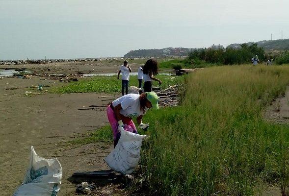 En alianza con Unisimón C.R.A limpia playas en Puerto Colombia y siembra mil mangles
