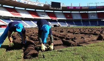 Inició instalación de gramado de última generación en el estadio Metropolitano