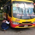 Transporte intermunicipal de pasajeros listo para garantizar el servicio durante jornada electoral de este domingo