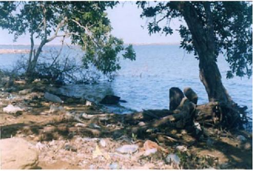 cienaga-de-balboa