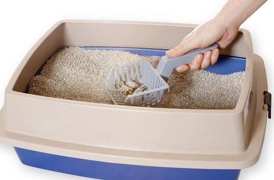 arena-sanitaria-para-gatos-zeocats-biodegradable-4kg_3