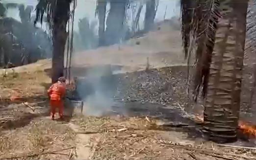 incendios-en-colombia