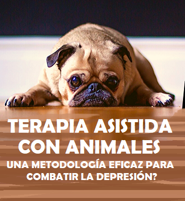 TERAPIA ASISTIDA CON ANIMALES - copia