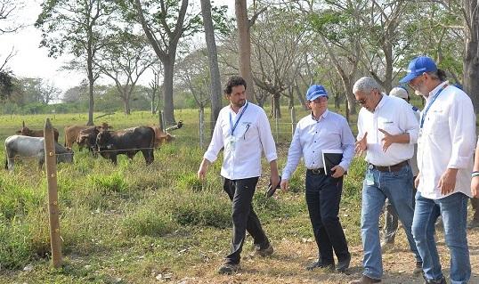 Colombia dio el primer paso para la reapertura total del mercado de carne bovina colombiana a Rusia