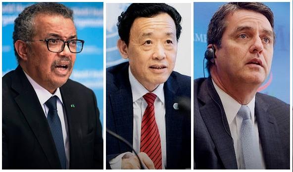 FAO, la OMS y la OMC recuerdan que las medidas para mitigar el Covid-19 no deben afectar el comercio y los mercados de alimentos