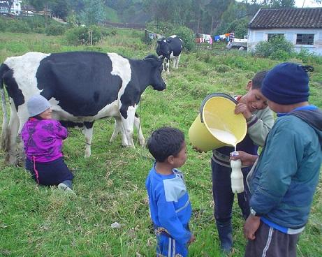 En el Día del Campesino, Fedegán hizo importante reconocimiento a los ganaderos del país