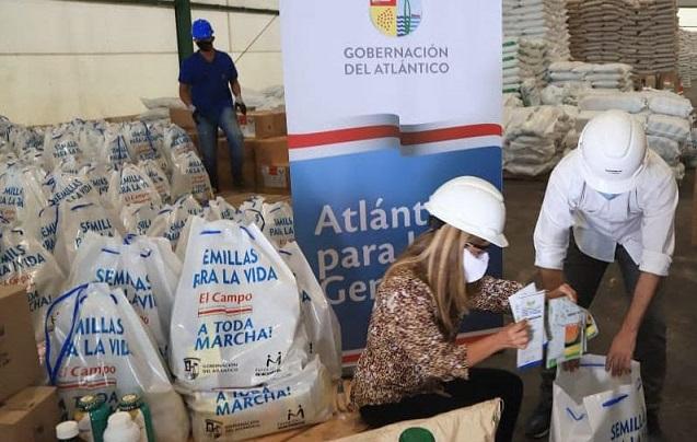 Desde este miércoles 2.253 productores del Atlántico empezaron a recibir kits de siembra para poner el Campo a Toda Marcha: Elsa Noguera